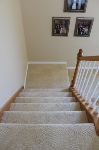 Carpet_Brownstown S13