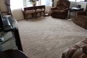 Carpet_Brownstown J8