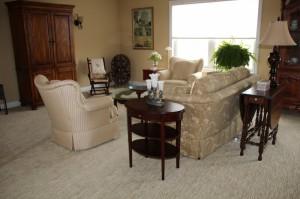 Carpet_Brownstown B1