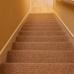 Carpet_Brownstown B24